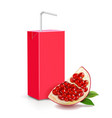 pomegranate juice package box realistic vector image vector image