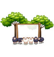 wooden frame template with sheeps vector image vector image