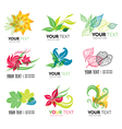 flower logo 3 vector image vector image