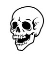 laughing human skull vector image vector image
