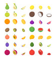 fruits and berries 3d icons set isometric view vector image vector image
