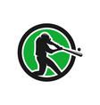 modern sport baseball logo vector image