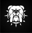 White Bulldog Face vector image vector image