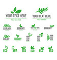 concept of green leaves vector image vector image