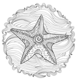Starfish with high details vector image vector image