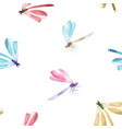 watercolor dragonfly pattern vector image vector image