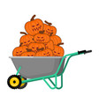 wheelbarrow halloween bunch terrible pumpkins vector image