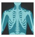 x-ray shot shoulder human body bones vector image vector image