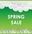 typographic design lettering spring sale banner vector image