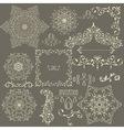 lacy vintage floral design elements vector image