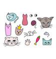 cats fish mouse princess element vector image
