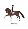 dressage horseback riding flat vector image