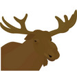 elk head brown color vector image vector image