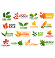 gree eco leaf food and seasonal promo icons vector image