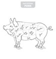 pig hand-drawn vector image