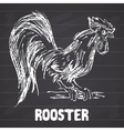 Rooster or cock bird Hand drawn sketch vector image vector image
