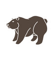 big bear standing graphic vector image vector image