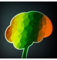 Colorful structure in the form of brain vector image vector image