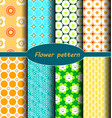 geometrical themes and floral patterns vector image