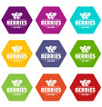 organic berries icons set 9 vector image vector image