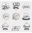 Speed - badges lettering calligraphy is written vector image vector image