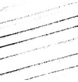 striped grunge texture vector image vector image