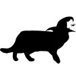 black silhouette of walking cat in witch hat vector image