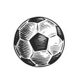 football ball on white hand drawn sketch vector image vector image