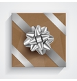 Gift box - christmas and birthday bow vector image vector image