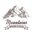Hand drawing high mountain peak and forest vintage