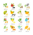 set flat icons of seeds vector image