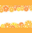 sliced halves citrus vector image