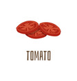 tomato ingredient for burger flat cartoon vector image vector image