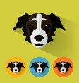 dog portrait with flat design vector image vector image