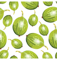 gooseberry pattern vector image vector image