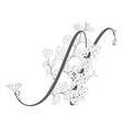 hand drawn floral n monogram and logo vector image
