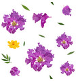 seamless pattern crape myrtle and cosmos vector image vector image