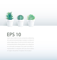 Cactus plant in pot on white background vector image vector image