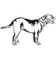 decorative standing portrait of dog dogue de vector image vector image