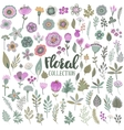 graphic set with beautiful flowers leaves vector image vector image