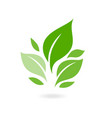 green leaf ecology nature icon plants vector image