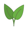green leaf ecology symbol vector image