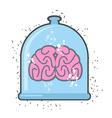 Hhuman brain in a jar Brain for a scientific vector image vector image