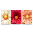 set of covers with bud of flowers close-up trendy vector image vector image