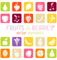 Set of flat square icons with fruits and berries vector image vector image