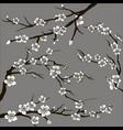 set of sakura japan cherry vector image vector image