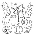 vegetable black icon set vector image vector image