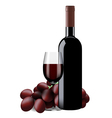 bottle glass wine and grapes isolated vector image vector image