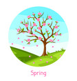 spring landscape with tree and sakura flowers vector image