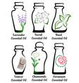 set of essential oils part 2 vector image